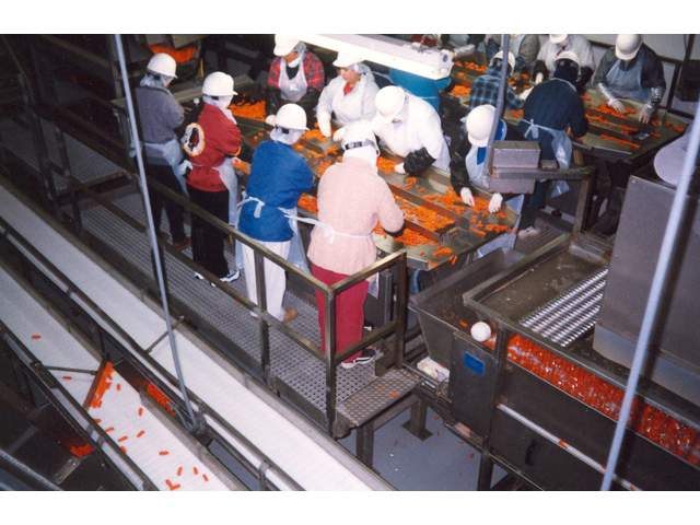 Ergonomic Work Mats in Food Processing Facility